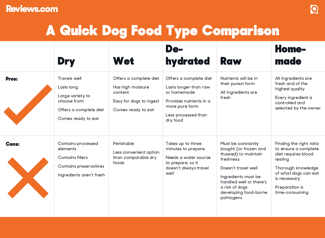Dog Food Type Comparison